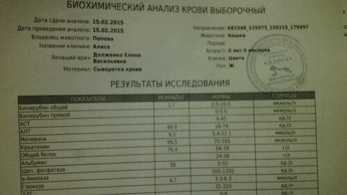https://img-fotki.yandex.ru/get/4602/50951434.19/0_126535_89f541d8_L.jpg