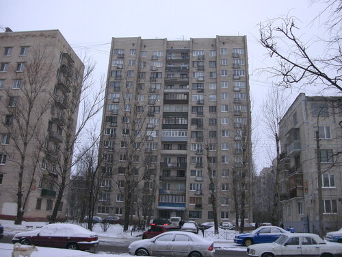 пр. Космонавтов 88