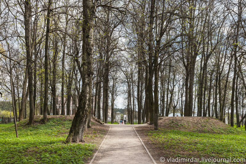 Липовая аллея в усадебном парке в Дубровицах