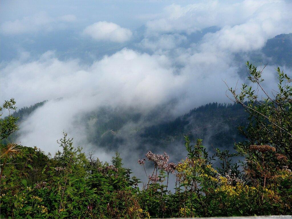 На высоте свыше 1800 метров.