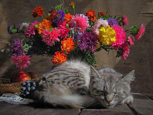 http://img-fotki.yandex.ru/get/4602/idubovaya.a6/0_92a2e_84dc9cd6_L.jpg