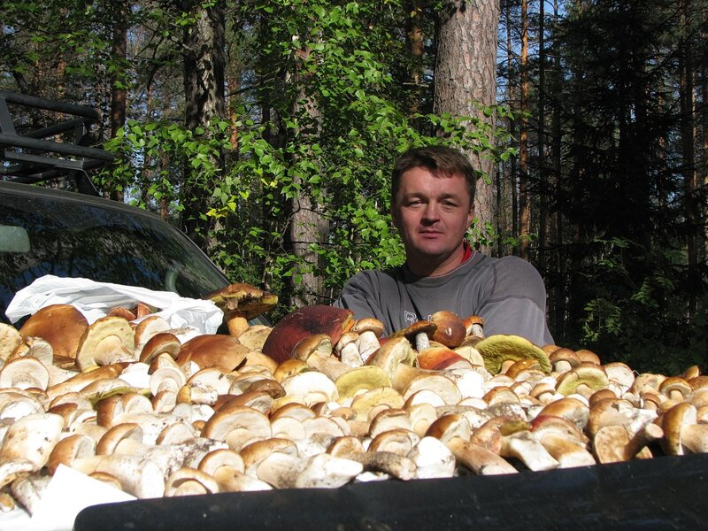 Виталий Алексеевич - Сбор грибов, осень 2010 года
