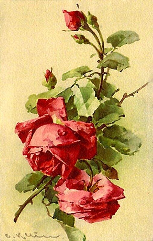 К. Кляйн. 56.  Розы.