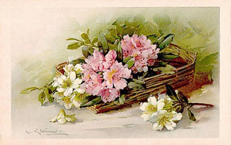 Кляйн.96.  Цветы.