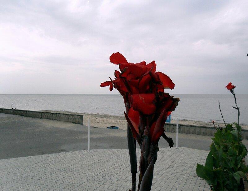 Прогулка у моря...