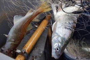 Две недели в море без еды и воды. Один рыбак умер, трое хотят вернуться в КНДР