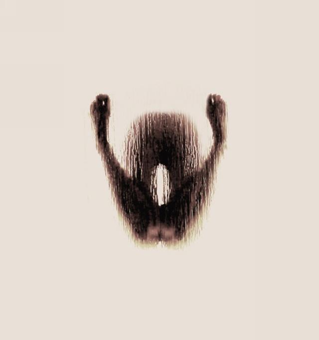 Анастасия Мастракули. Алфавит из обнаженных девушек в душе 0 141b35 351734ec orig