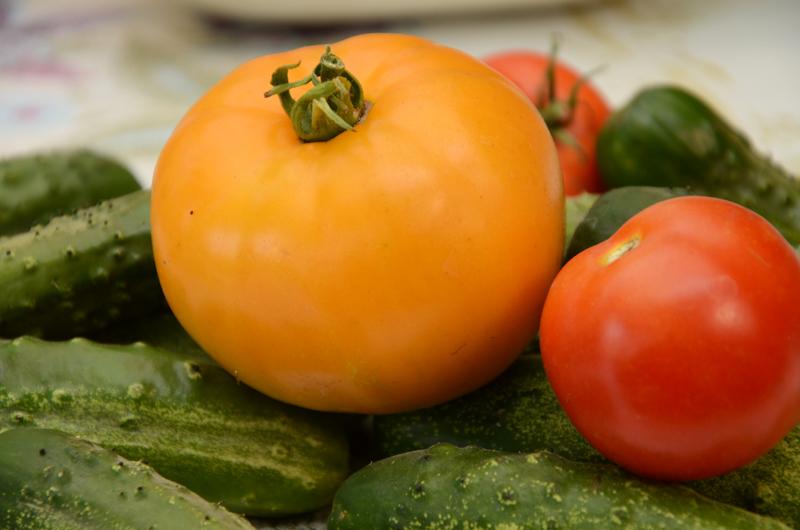 помидор огурец овощи