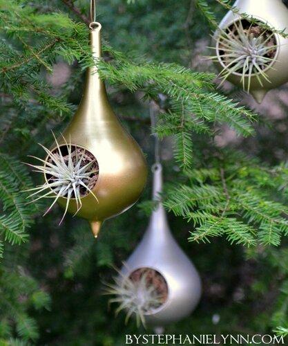 Террариум для елки