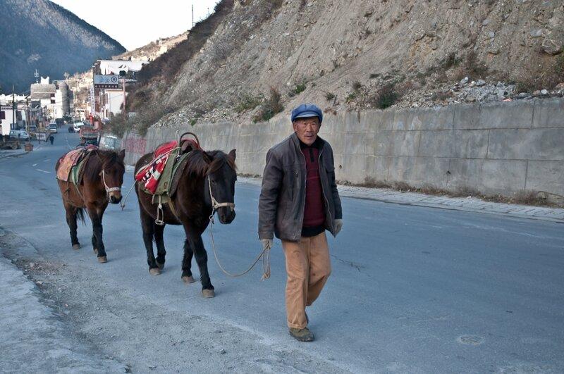 Лошадки и их хозяин