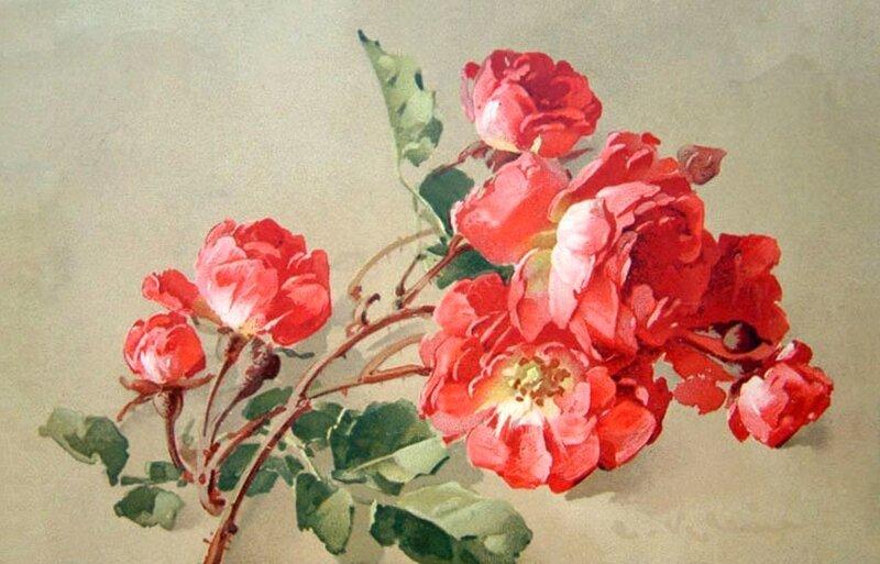 К. Кляйн. 91. Розы.