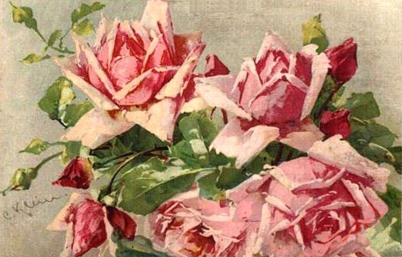 К.Кляйн.  130. Розы.