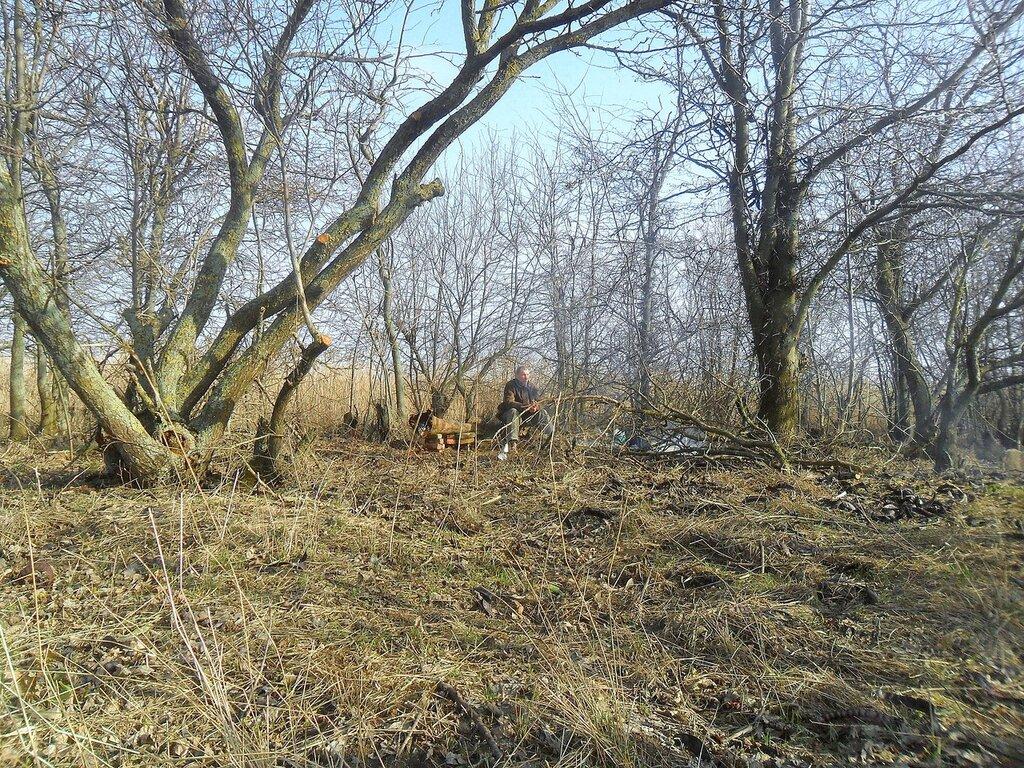 На Природе, у деревьев ... SAM_5507.JPG