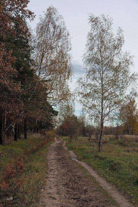Природно-исторический парк «Кузьминки-Люблино»