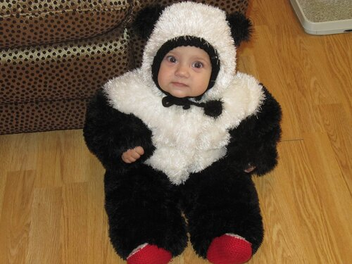 Как связать комбинезон панду