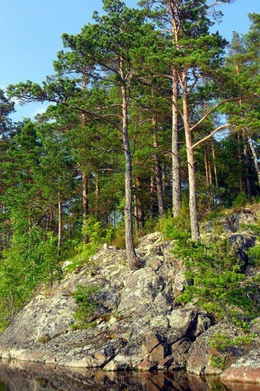 Скалистые берега Ладоги.