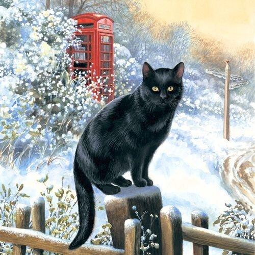 Рождественские коты.