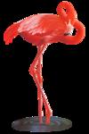 jcw_flamingo_RG.png