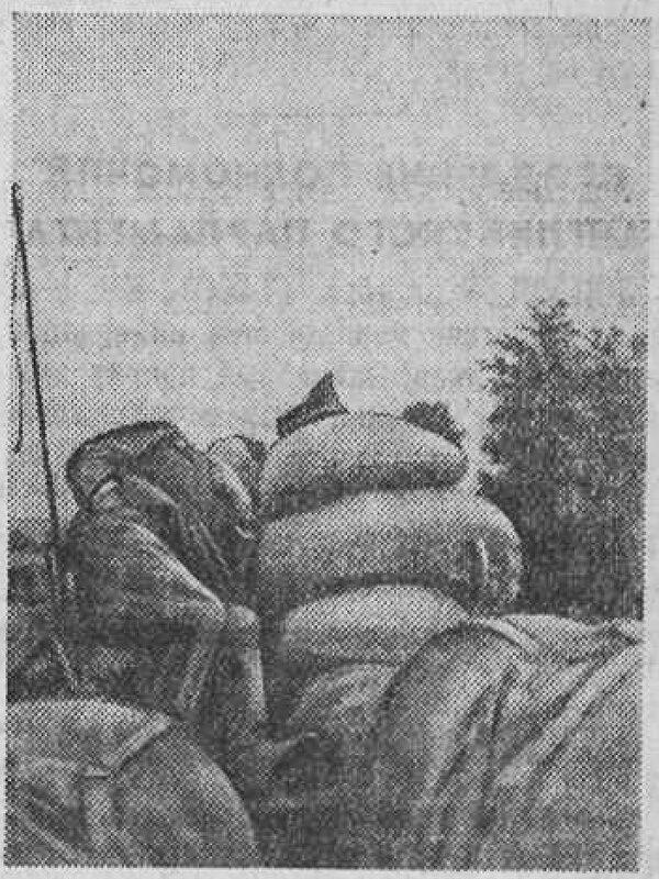 «Красная звезда», 9 октября 1941 года