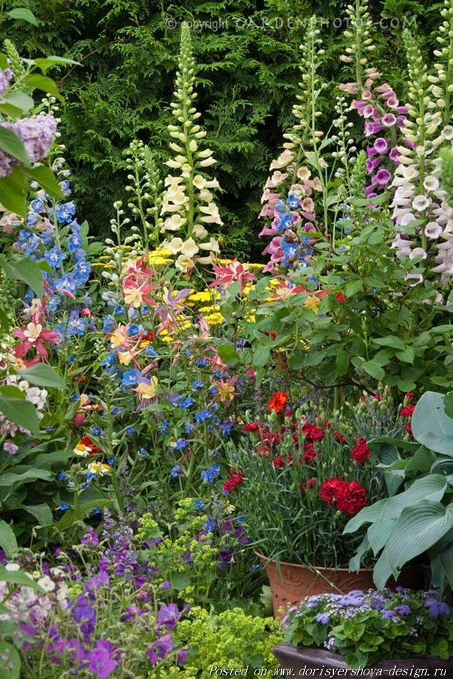 английский коттедж,  заросший сад английского коттеджа, деревенский стиль сада английского коттеджа, деревенский сад