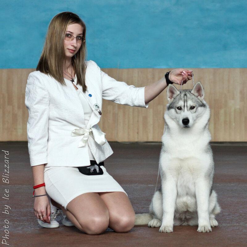 https://img-fotki.yandex.ru/get/4605/27498860.37c/0_11e4f6_1f519946_XL.jpg