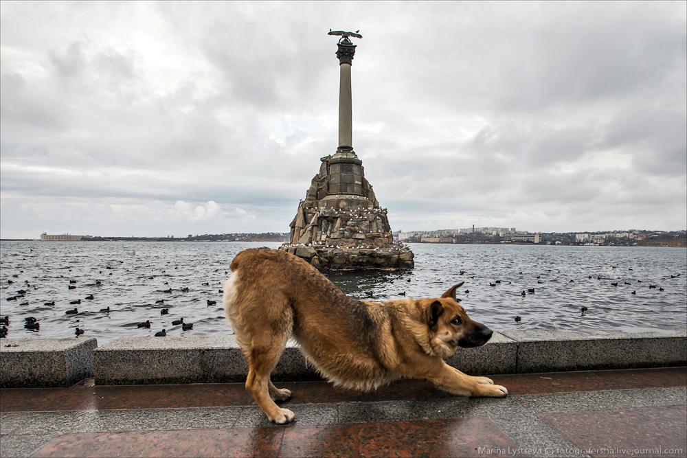 Севастополь, Научный, Крым