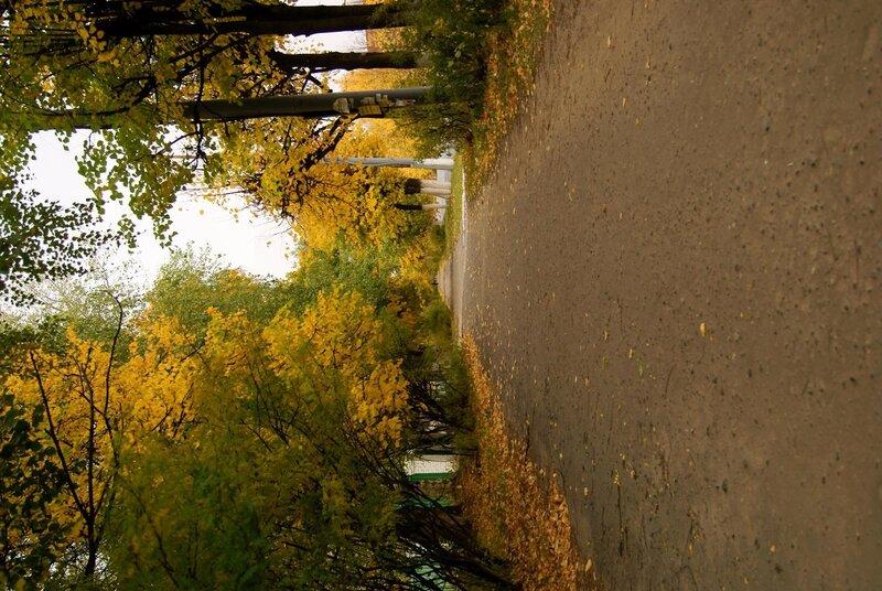 Осенняя Йошкар-Ола