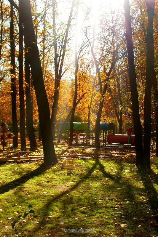Последние солнечные, теплые дни этой осени
