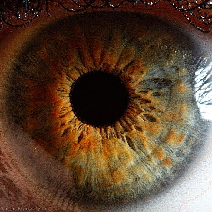 Макросъемка глаз - фотограф Сурен Манвелян