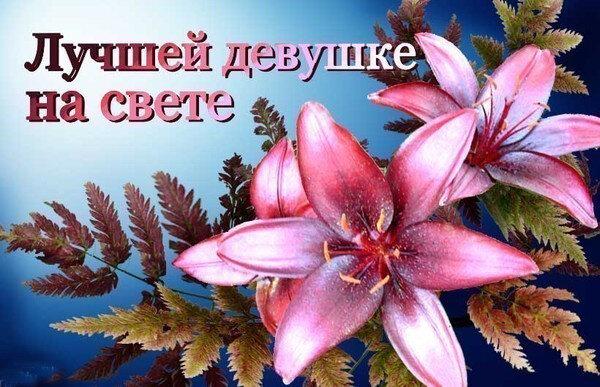 http://img-fotki.yandex.ru/get/4605/ra3aog2.45/0_50078_631d5469_XL