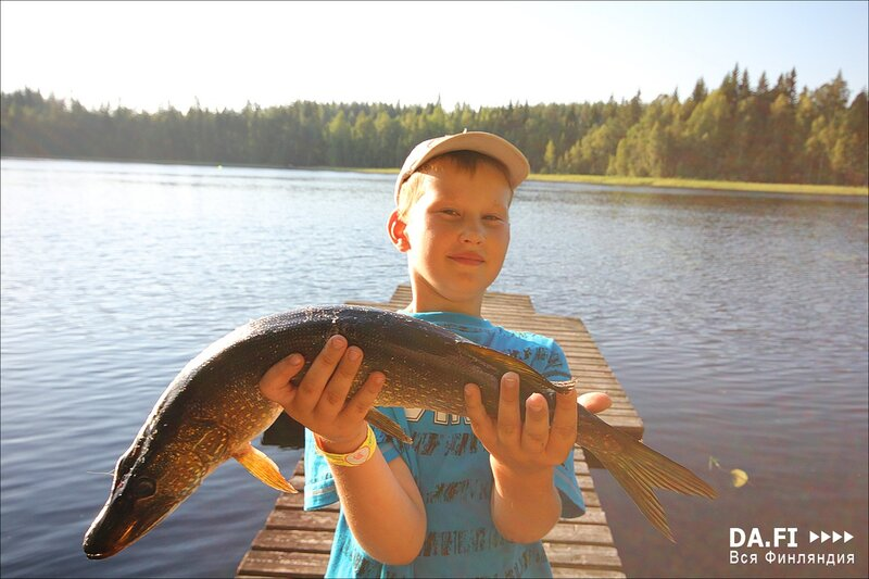 рыбалка в финляндии в нерест