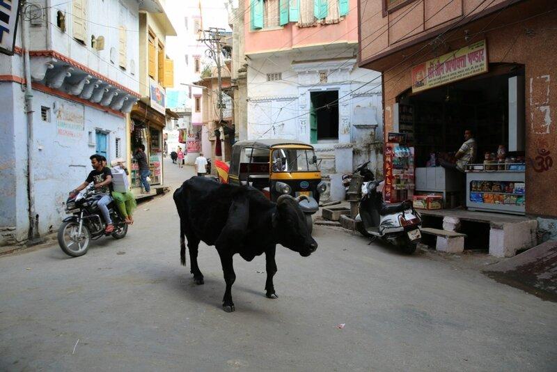 Навстречу приключениям... Индия... - Страница 2 0_1069bc_d1b85478_XL