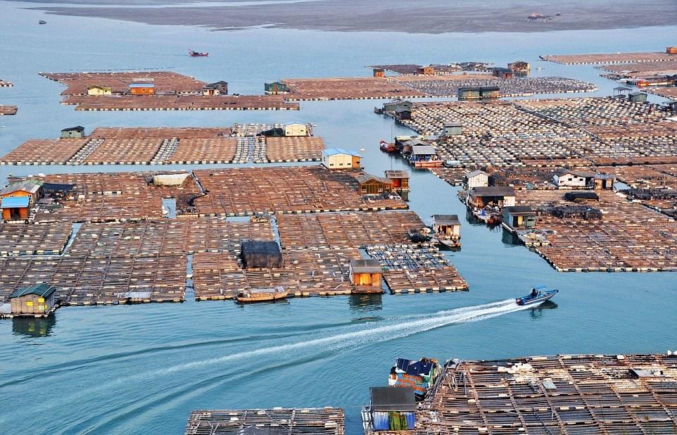 Плавающий город «морских цыган» в Китае 0 11e9e8 ef4fcd5d orig