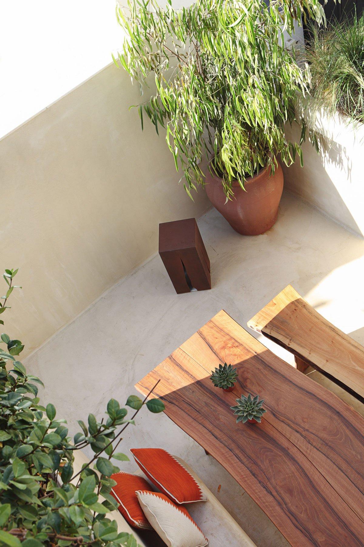 Растения на балконе квартиры