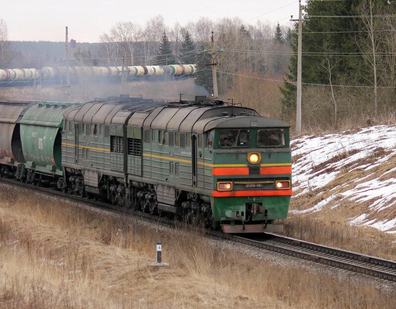 2ТЭ116-481 на перегоне Новосокольники - Выдумка