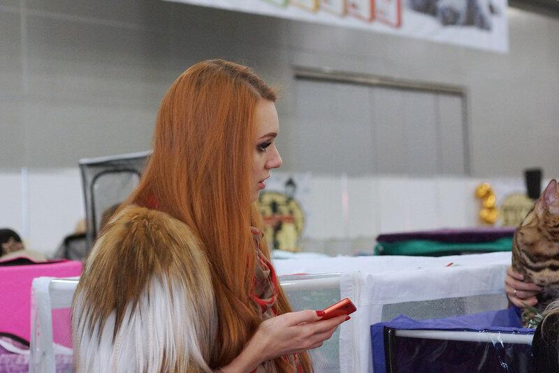 Девушка на выставке кошек