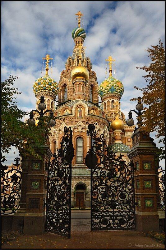Из Михайловского сада