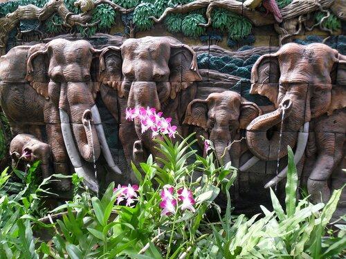 отдых тайланд паттаия