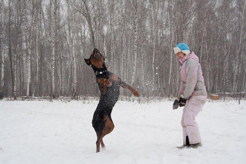 http://img-fotki.yandex.ru/get/4606/gloriy-a.25/0_58852_afb54544_XL.jpg