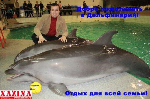 туры в дельфинарий, туры в Казань из Уфы, туры в набережночелнинский дельфинарий, туры к дельфинам, дельфинотерапия, дельфины в уфе, хазинатур дельфинарий