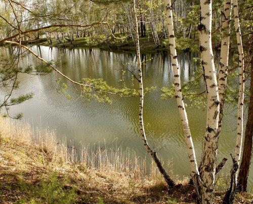 http://img-fotki.yandex.ru/get/4606/sayanusd.75/0_4e30f_d41a8070_L.jpg