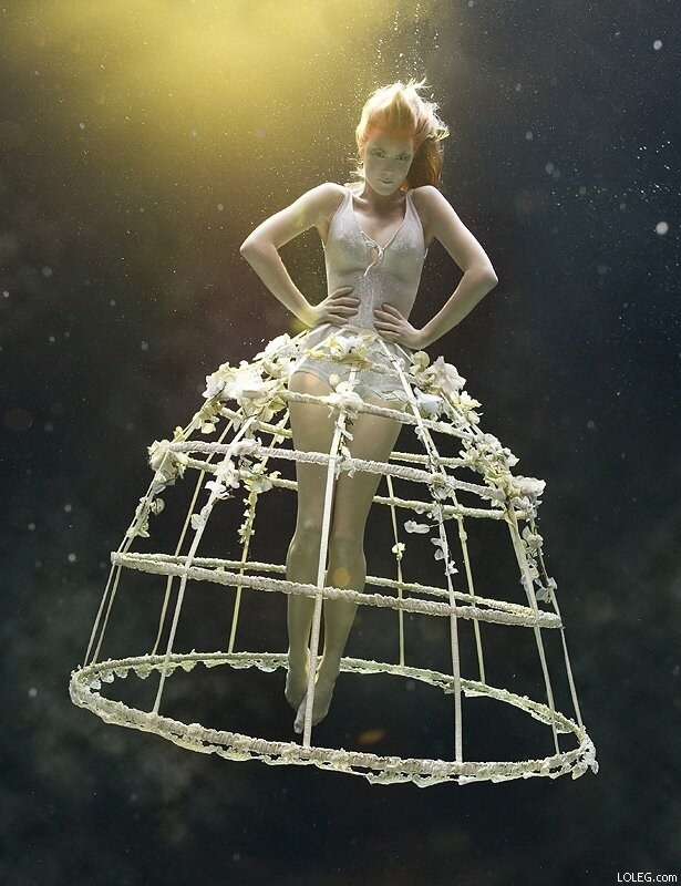 Zena Holloway's amazing underwater photography