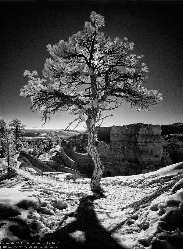 By: Jeff Clay Colorado