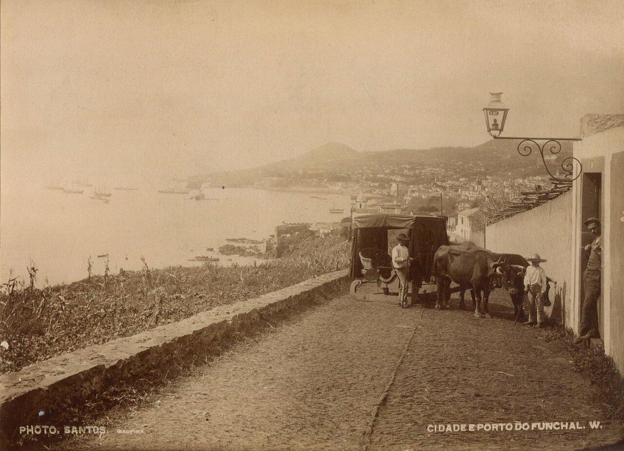 Фуншал. Вид на город и порт