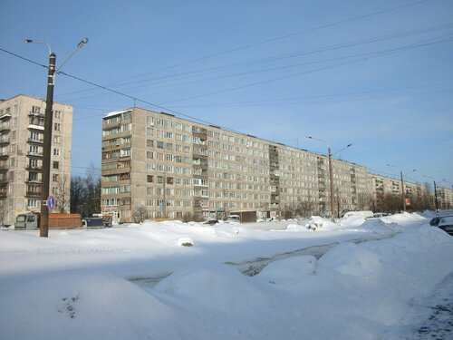 ул. Дыбенко 20к1