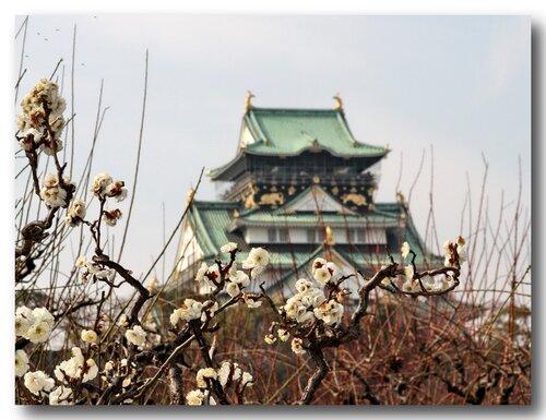 Осакский замок - символ японского города Осака