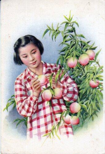 Девочка с персиками. Китай. 1950-е