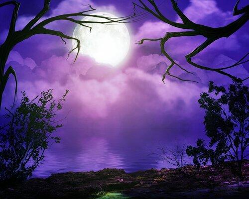 Лунная соната 15