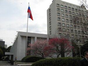 Россияне атакуют посольство в Японии с просьбами об эвакуации