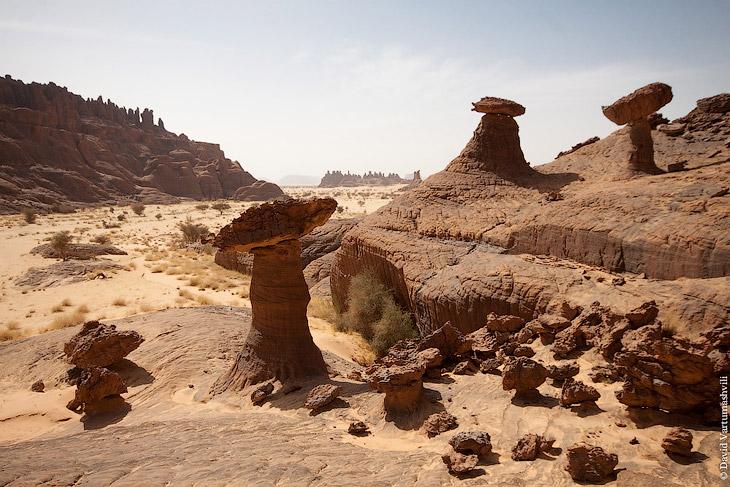 Гельта д'Аршей в пустыне Сахара (41 фото)